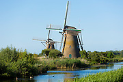 Group of authentic windmills at Kinderdijk UNESCO World Heritage Site, polder, ducks on dyke, Holland, The Netherlands