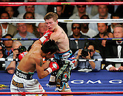 Manny Pacquiao lands a giant left hook which knocks out Ricky Hatton in the second round of their Light Welterweight title fight at the MGM Grand, Las Vegas , Nevada, 2nd May 2009.