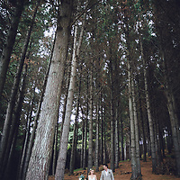 rural new Zealand wedding at matatoki on the farm with beautiful ceremony in native new Zealand forest felicity jean photography