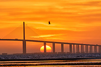 Sun rising under the Sunshine Skyway bridge from Fort De Soto Park. 36 images taken with a Fuji X-H1 camera and 200 mm f/2 OIS lens with a 1.4x teleconverter (ISO 400, 280 mm, f/22, 1/80 sec). Raw images processed with Capture One Pro and AutoPano Giga Pro.