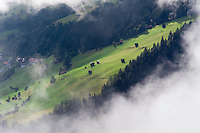 IFTE-NB-007651; Niall Benvie; View into the valley around Fliess from Kaunergrat visitor's centre; Austria; Europe; Tirol; horizontal; green; meadow forest woodland; 2008; July; summer; fog mist rain cloud; Wild Wonders of Europe Naturpark Kaunergrat