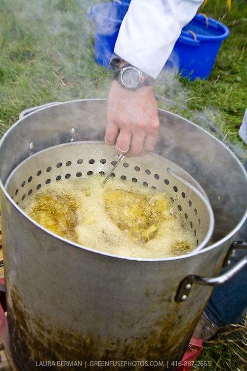 Potatoes cooking in a deep fryer at an outdoor farm feast.