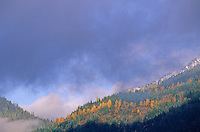 Sproat Mountain with autumn colors, Whistler, BC