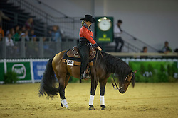 Annette Andersen, (DEN), Dun Lostma Chocolate - Team Competition and 1st individual qualifying  - Alltech FEI World Equestrian Games™ 2014 - Normandy, France.<br /> © Hippo Foto Team - Dirk Caremans<br /> 25/06/14