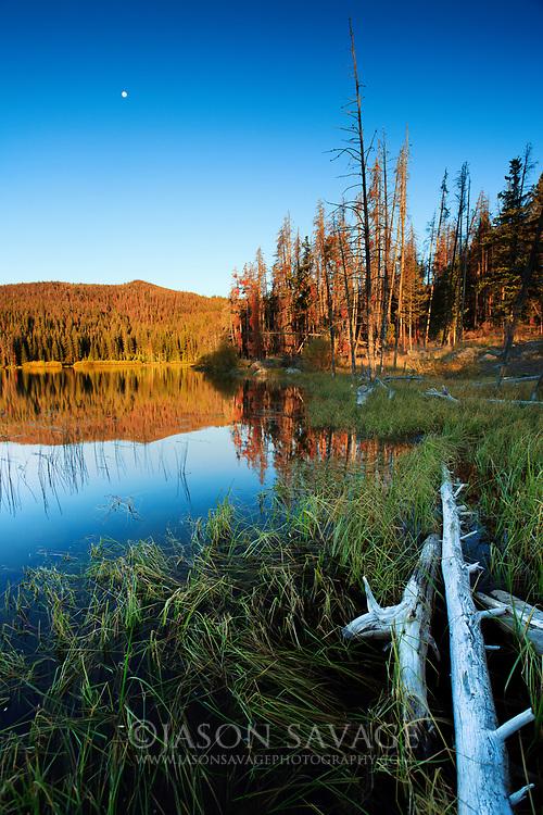 Park Lake north of Helena, Montana.