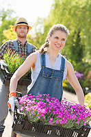 Smiling gardeners carrying flower pots in crates at plant nursery