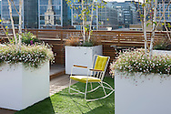 Roof terrace, astro turf, containers with Betula utilis var. jacquemontii, rocking chair