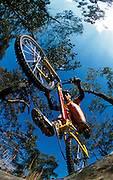 &copy; Sport the library/Chris Elfes<br />