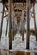 Under The Seal Beach Pier