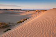 Sand dunes at Umpua Dunes John Dellenback Trail area of Oregon Dunes National Recreation Area, Oregon Coast.
