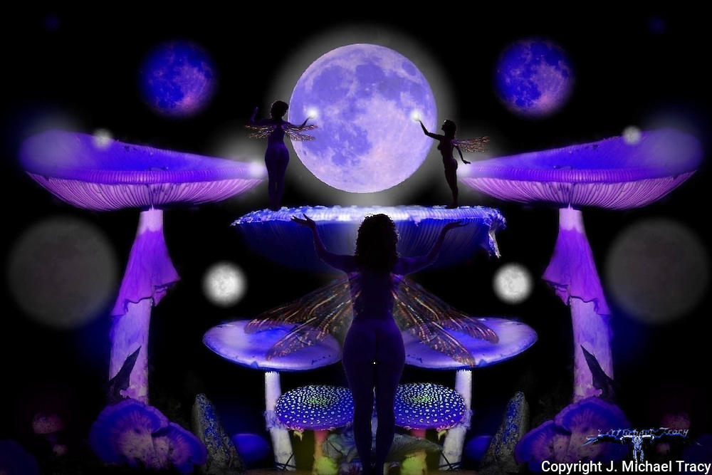Tiny fairies and Orbs paying homage to Mother Luna. Purple and lavender blue florescent mushrooms, orbs and fungi of Fairyscape.