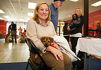 """""""Pumpkin"""" a mixed breed puppy sits contently on Nancy Porosky's lap awaiting adoption approval during Friday's Adopt a thon with the NH Humane Society at the Belknap Mall.  (Karen Bobotas/for the Laconia Daily Sun)"""