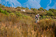 VILLIERSDORP, SOUTH AFRICA - overall leader and stage winner Christoph Sauser leads the field into the Silver Streams nature reserve during stage three of the Absa Cape Epic Mountain Bike Stage Race held between Villiersdorp and Greyton on the 24 March 2009 in the Western Cape, South Africa..Photo by Gary Perkin /SPORTZPICS
