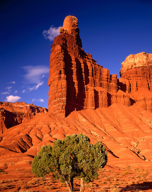 Chimney Rock, Capital Reef National Park Utah USA