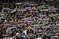 Illustration supporters Lyon  - 04.12.2014 - Lyon / Reims - 16eme journee de Ligue 1  <br /> Photo : Jean Paul Thomas / Icon Sport