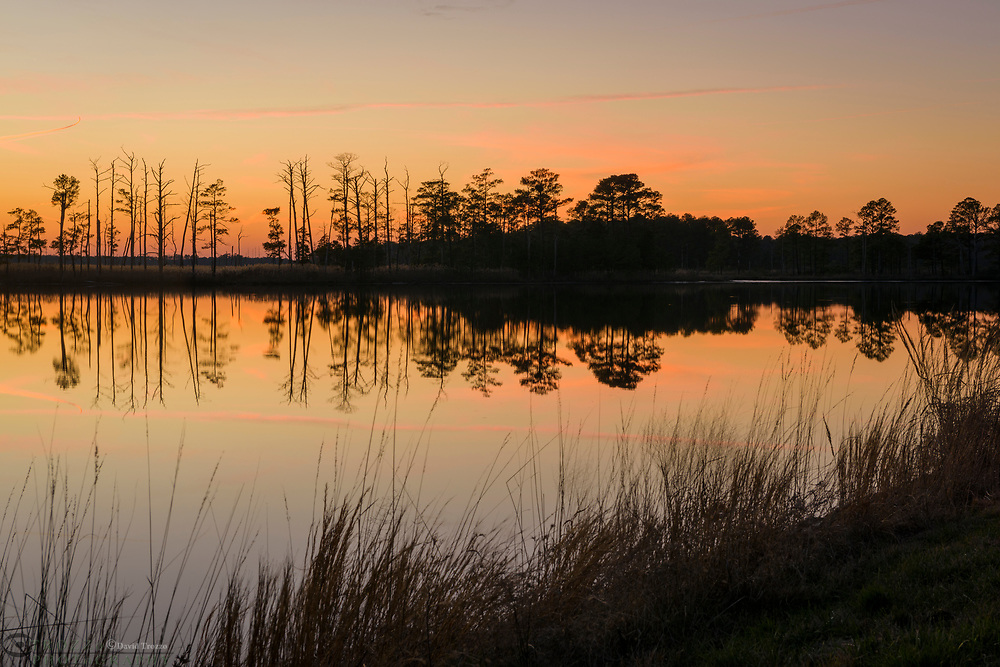 Suset on the Blackwater River, Blackwater NWR, Cambridge, Maryland