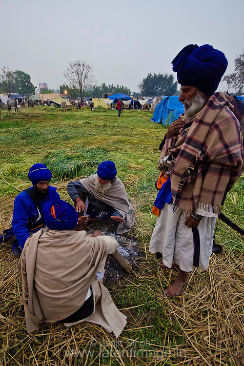 A group of Nihang discussing in the cold morning during Hola Mohalla