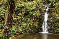 Cachoeira no Rio Bonito. Urubici, Santa Catarina, Brasil. / <br /> Waterfall at Bonito River. Urubici, Santa Catarina, Brazil.