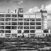 An old factory  in the Highland Park area shows the post-industrial plight of Detroit with broken windows and a parking lot filled with weeds.