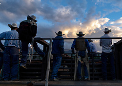 Cowboys watch the rodeo from behind the chute at the Snowmass Rodeo in Snowmass, Colorado on August 22, 2018.