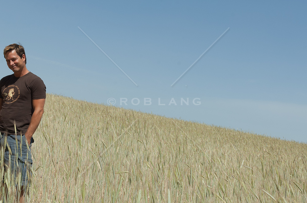 adorable man standing in a field of wheat