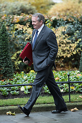 © Licensed to London News Pictures . 20/11/2017. London, UK. International Trade Secretary DR LIAM FOX seen on Downing Street following a Brexit Cabinet Meeting . Photo credit: Joel Goodman/LNP