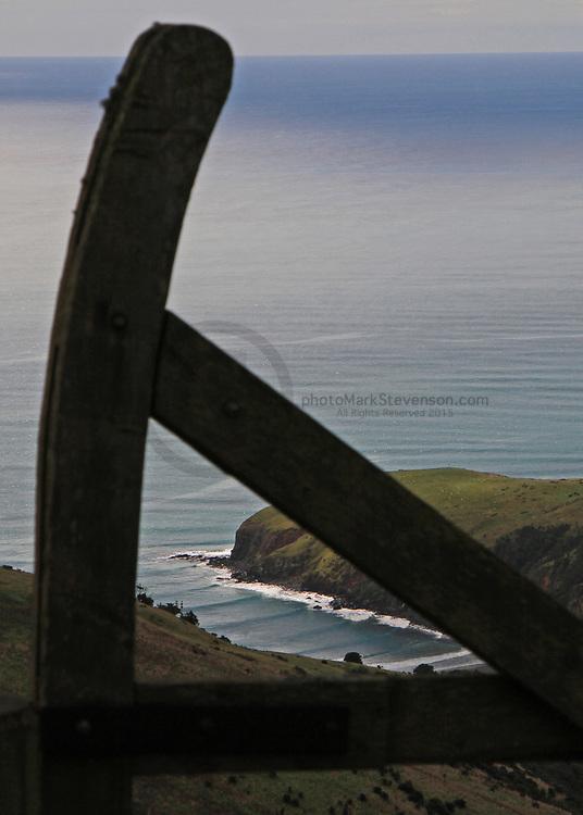 north coast Dunedin
