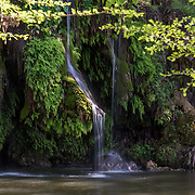 Krause Springs - Spicewood, Texas