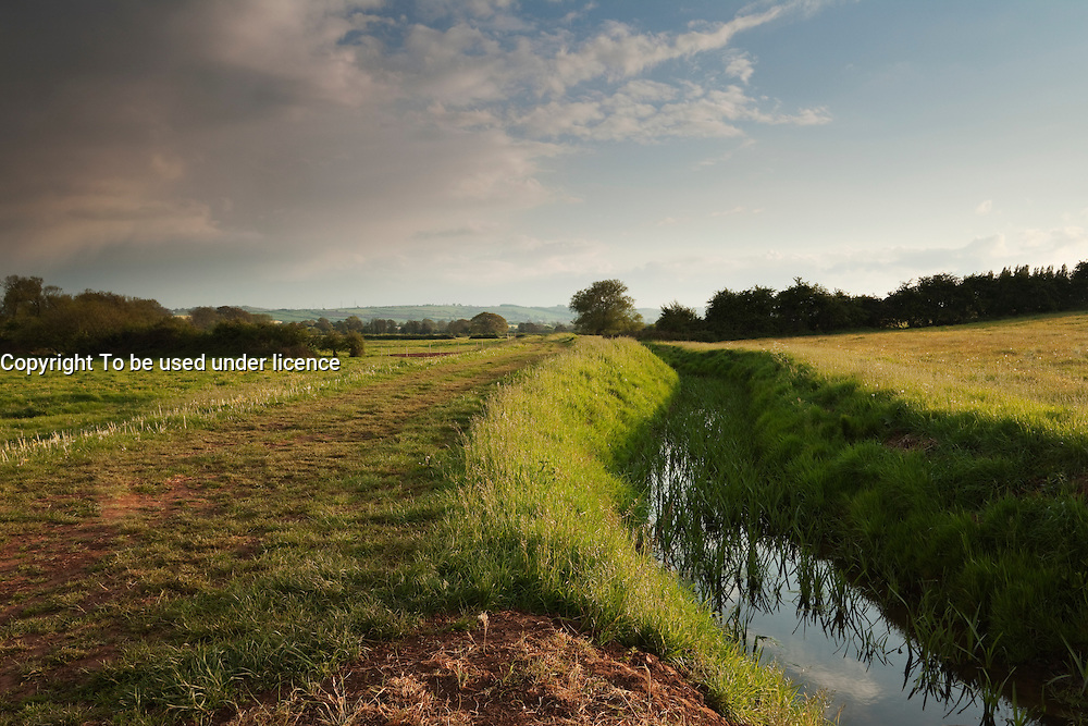 View upstream on Durleigh Brook in late Spring, showing the edge of The Meads in the foreground and the Quantock Hills in the background.