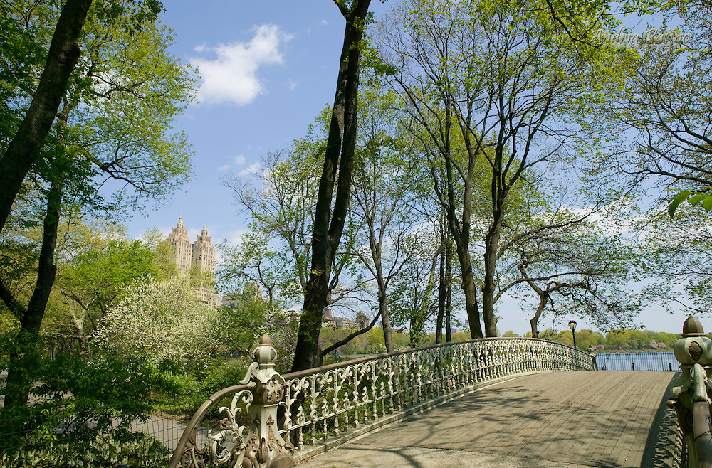Reservoir Bridge, Central Park