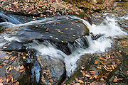 See intimate falls and cascades of Duggers Creek on a loop walk of 0.3 miles, starting from the parking lot of Linville Falls Visitors Center (run by the National Park Service), in Pisgah National Forest, North Carolina, USA. Directions: in Burke County, turn eastwards at Mile Post 316.3 of the Blue Ridge Parkway (north of where US 221 crosses the Parkway and south of where NC 181 crosses). Spared by its rugged terrain from clear-cutting in the early 1900s, Linville Gorge has some of the best remnant stands of uncut, old-growth forest in the southern Appalachians. This is one of the few places where the Rosebay, Catawba, and Carolina rhododendron grow side by side.