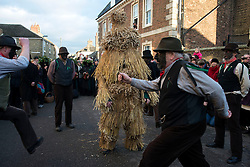 © Licensed to London News Pictures.11/01/2013. London, UK.A man dressed in straw bear costume dances with Morris dancers during the annual Straw Bear Festival in Whittlesea. The origins of festival dates back to the 19th century. The first sighting of Whittlesea's famous straw bear was back in 1882 and after a break of 71 years the current ritual was revived back in 1980. Photo credit : Peter Kollanyi/LNP