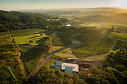 Aerial views over Alexana winery & tasting room, Dundee Hills, Willamette Valley, Oregon