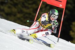 02.02.2011, Nici Hang, Lachtal, AUT, FIS Junioren Riesentorlauf, Men, im Bild // Martin Goesweiner (AUT) // during the men giant slalom race at the FIS Junior races in Lachtal, EXPA Pictures © 2011, PhotoCredit: EXPA/ S. Zangrando