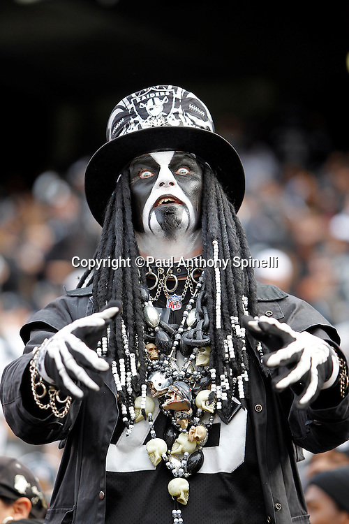 An Oakland Raiders fan with a wild costume leers during the NFL week 16 football game against the Indianapolis Colts on Sunday, December 26, 2010 in Oakland, California. The Colts won the game 31-26. (©Paul Anthony Spinelli)