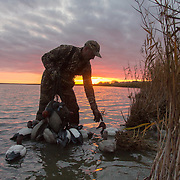 Waterfowling Silhouettes
