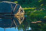 Rock reflection in Opeongo Pond<br /> Algonquin Provincial Park<br /> Ontario<br /> Canada