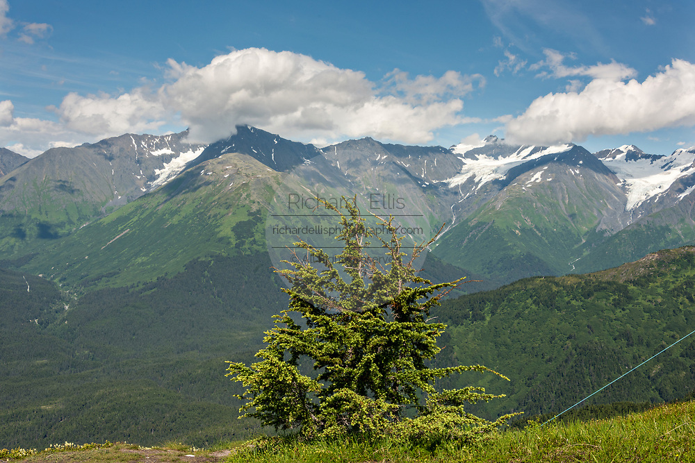 View of the Chugach Mountains from the summit on Mt. Alyeska in Girdwood, Alaska.