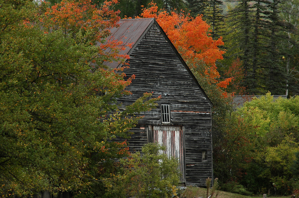 I've been asked by several people if they could paint this series of barn images. Taken in Jackson, New Hampshire when the leaves were still working their way to peak. Still stunning nonetheless