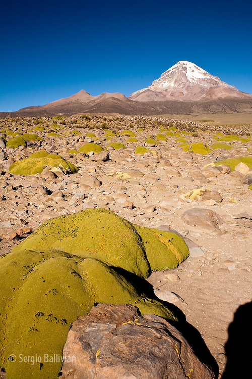 The classic volcano form is Bolivia's highest peak at  6549 m / 21480 ft in the western Andean highlands in Sajama National Park next to Chile.  The massive snow-capped peak is considered a sacred mountain for the locals and is also climbed by mountaineers from all over the world.