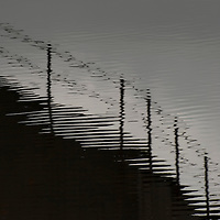 shadow of fence on rippled water