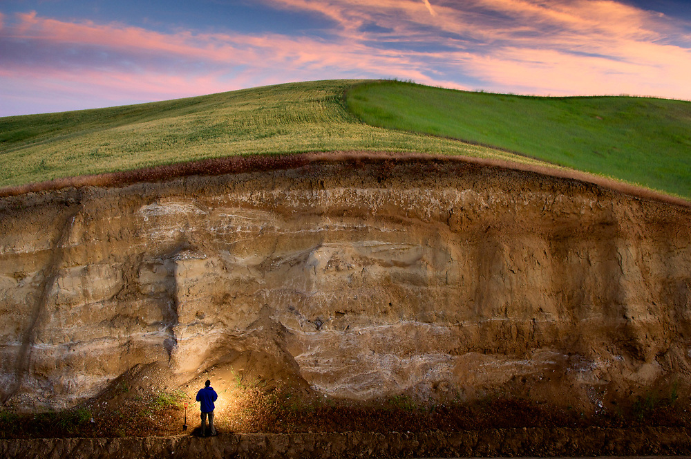 Soil layers of the Palouse region of eastern Washington are revealed in a deep road cut.  More then ten layers of buried paleosoils are visible to soil scientist John Reganold of Washington State University.<br />