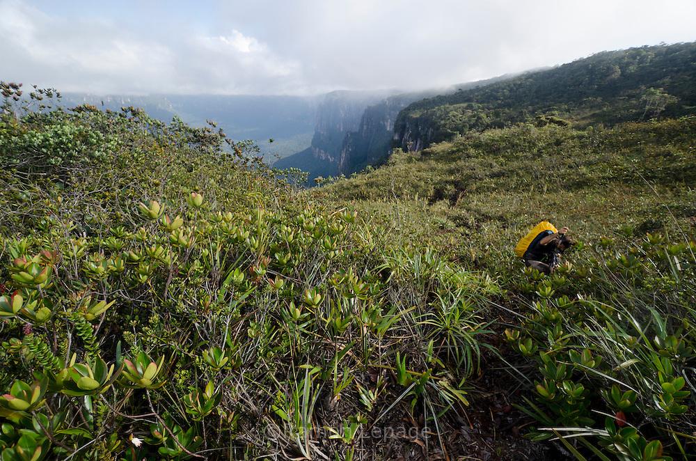 """AUYANTEPUY, VENEZUELA. Excursionista durante travesía del tepuy por el ''Cañon del Diablo''.  El Auyantepuy es el mayor de los tepuis del Parque Nacional Canaima. En sus 700 kms2 alberga el salto angel o conocido por lengua indígena Pemon como """"Kerepacupai Vena; es la caída de agua más grande del mundo con sus 979 metros de altura. (Ramon lepage /Orinoquiaphoto/LatinContent/Getty Images)"""