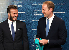 JUN 09 2014 Prince William and David Beckham at United for Wildlife launch