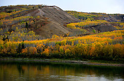CANADA ALBERTA PEACE RIVER 9OCT09 - Peace River and the Boreal forest in autumn colours in northern Alberta, Canada...Significant deposits of Bitumen, also known as tarsands have been found in the area around Peace River and Slave Lake, thus threatening the continued existence of flora and fauna of the Boreal through oil and gas developments...The Canadian boreal region represents a tract of land over 1,000 kilometres wide separating the tundra in the north and temperate rain forest and deciduous woodlands that predominate in the most southerly and westerly parts of Canada. ..The boreal region contains about 14% of Canada's population. With its sheer vastness and integrity, the boreal makes an important contribution to the rural and aboriginal economies of Canada, primarily through resource industries, recreation, hunting, fishing and eco-tourism...Photo by Jiri Rezac / GREENPEACE