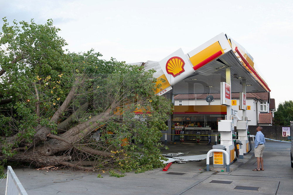 © Licensed to London News Pictures. 11/08/2019.<br /> Mottingham ,UK. A tree has fallen onto the roof of a Shell petrol station in Mottingham, South East London. The tree has damaged half of the roof, nobody has been injured. Photo credit: Grant Falvey/LNP