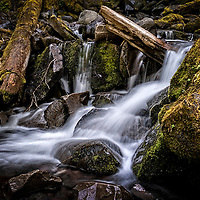 Proxy Creek breaks over Proxy Falls located in the Cascade Mountains in Oregon.  Proxy Falls is one of the most photographed waterfalls in Oregon.