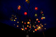 Senhora do Porto_MG, Brasil...Arvore de natal a noite em Senhora do Porto...The Christmas Tree at night in Senhora do Porto...Foto: LEO DRUMOND /  NITRO