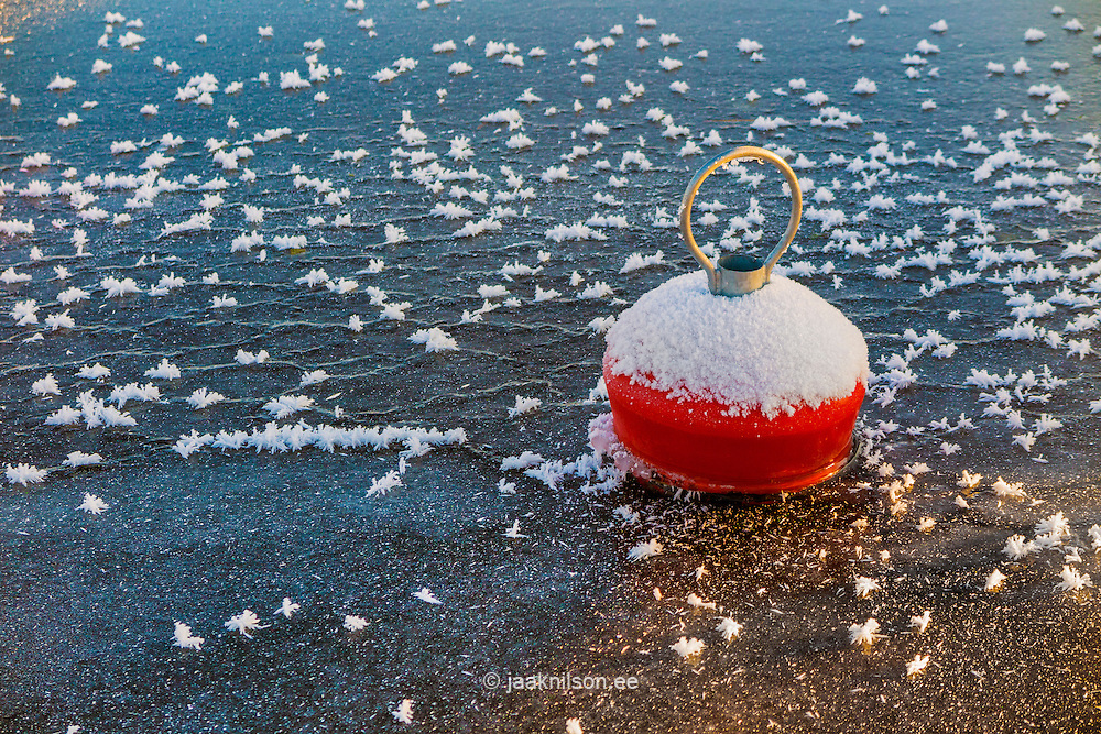 Floating red buoy in frozen lake Viljandi, Estonia. Ice, transportation, safety.