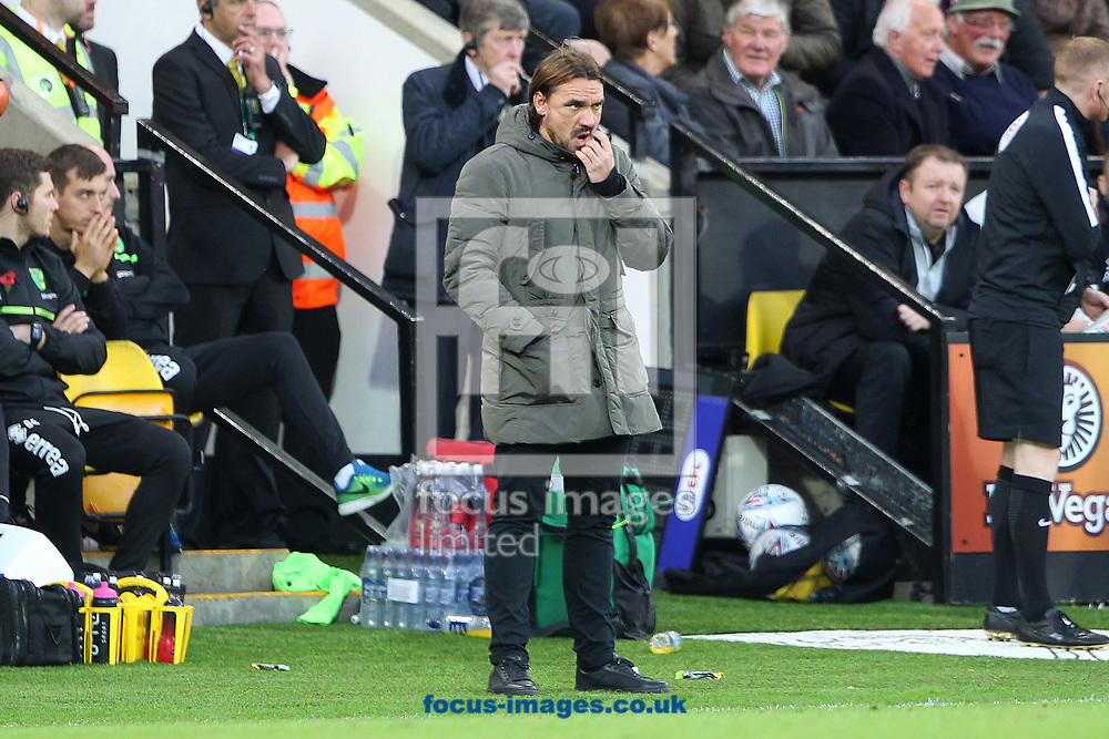 Norwich Head Coach Daniel Farke during the Sky Bet Championship match at Carrow Road, Norwich<br /> Picture by Paul Chesterton/Focus Images Ltd +44 7904 640267<br /> 28/10/2017